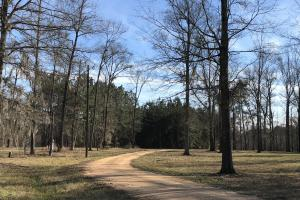 Pearl River Retreat Lot 8 - Lawrence County MS