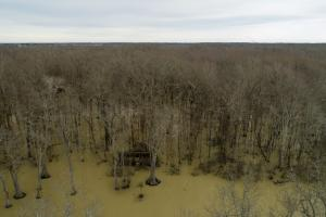 336+/- Acres Flooded Timber Duck Hunting & Farmland - Woodruff County AR