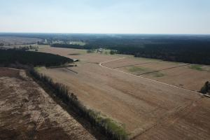 Marion Agricultural Investment Property  in Marion, SC (11 of 12)