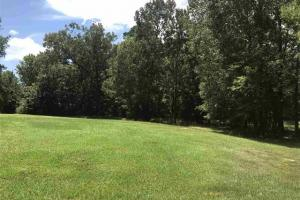 Fountains of Northshore 2 acre lot