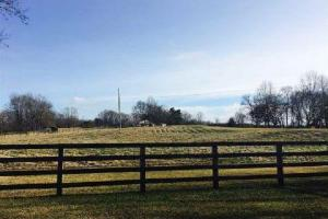 Terry 50 acre Horse and Hunting Property - Hinds County MS