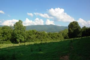 tn land for sale, farm land for sale, acreage for sale (7 of 14)