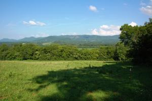 tn land for sale, farm land for sale, acreage for sale (10 of 14)