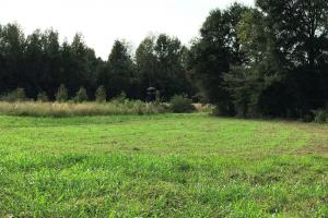large food plot with deer hunting house (12 of 17)