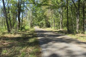 130 acre Hunting Tract - Hinds County MS