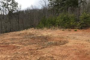 Alexander County Timber and Hunting Tract in Alexander, NC (42 of 44)