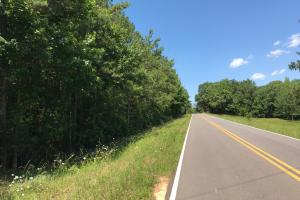 Autauga County 116 acre Home/Hunting/Rec Tract in Autauga, AL (2 of 15)