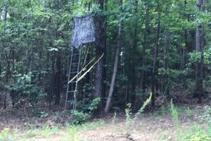Autauga County 116 acre Home/Hunting/Rec Tract in Autauga, AL (13 of 15)