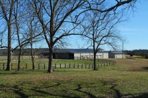 Rock Creek Equestrian Estate with Custom Home in Lawrence, AL (36 of 56)