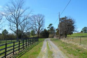 Rock Creek Equestrian Estate with Custom Home in Lawrence, AL (51 of 56)
