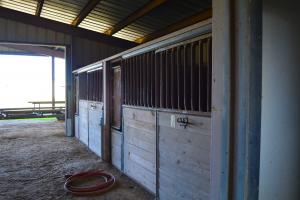 Feed/Tack Room  (42 of 56)