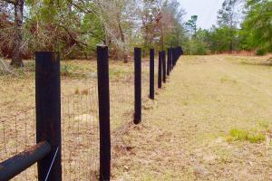 Mud Hill Hunting-Timber Investment-Homesite in Washington, FL (5 of 16)