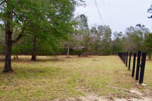Mud Hill Hunting-Timber Investment-Homesite in Washington, FL (4 of 16)