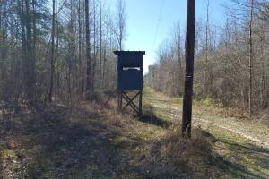 Mt. Coney Road/Midway Recreational Tract in Bullock, AL (6 of 7)