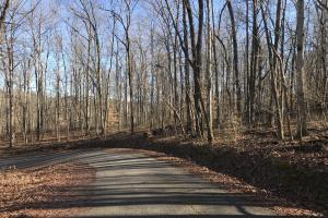 Loudon County Residential Lot in Loudon, TN (2 of 9)