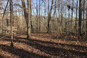 Loudon County Residential Lot - Loudon County TN