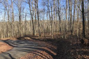 Loudon County Residential Lot in Loudon, TN (5 of 9)