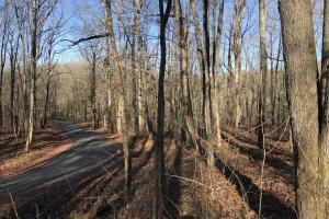 Loudon County Residential Lot in Loudon, TN (4 of 9)