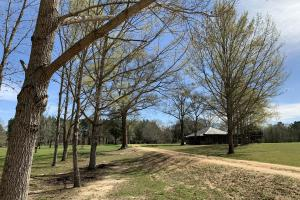 Mineola Family Farm Lake & Lodge Tract in Monroe, AL (76 of 77)