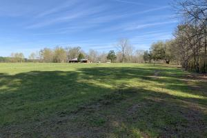 Mineola Family Farm Lake & Lodge Tract in Monroe, AL (77 of 77)