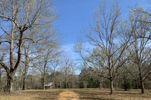 Mineola Family Farm Lake & Lodge Tract in Monroe, AL (42 of 77)