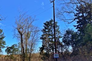 Old Citronelle Road Homesite Tract B in Mobile, AL (10 of 12)