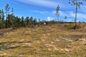Old Citronelle Road Homesite Tract B in Mobile, AL (6 of 12)