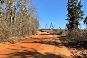 Old Citronelle Road Homesite Tract C in Mobile, AL (5 of 5)