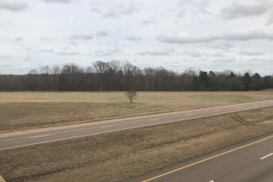52.3 Acre Tract Byhalia in DeSoto, MS (4 of 19)