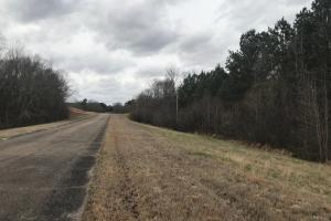 52.3 Acre Tract Byhalia in DeSoto, MS (10 of 19)