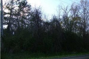 Clinton Commercial Lot in Hinds, MS (2 of 3)