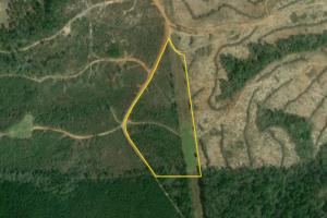 Bridlepath Road Jackson Acreage Lot - Clarke County AL
