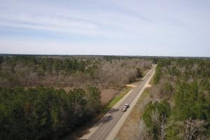 106 Acre Hunting/Timber Tract in Polk, TX (8 of 20)