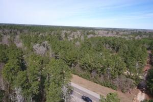 106 Acre Hunting/Timber Tract in Polk, TX (20 of 20)