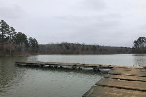 Pier on Dumas Lake. (2 of 14)