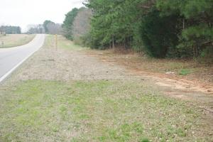 Alabama Highway 22 Hunting & Timber Tract - Dallas County AL