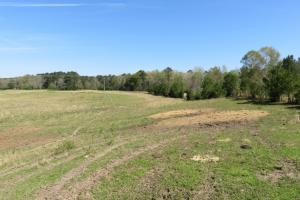 Homesite with pasture - Rankin County MS