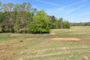 Homesite with pasture in Rankin, MS (2 of 20)