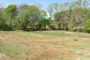 Homesite with pasture in Rankin, MS (7 of 20)