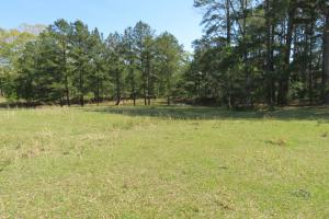 Homesite with pasture in Rankin, MS (15 of 20)
