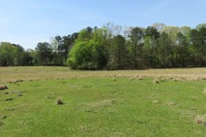 Homesite with pasture in Rankin, MS (20 of 20)