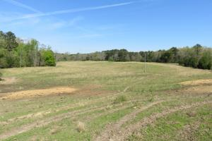 Homesite with pasture in Rankin, MS (9 of 20)