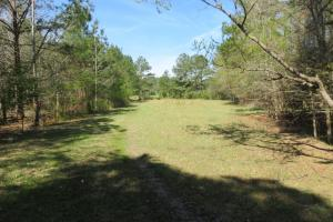 Homesite with pasture in Rankin, MS (5 of 20)