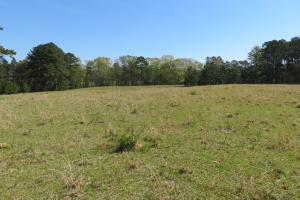 Homesite with pasture in Rankin, MS (10 of 20)