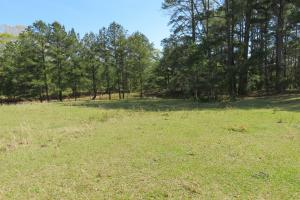 Homesite with pasture in Rankin, MS (17 of 20)