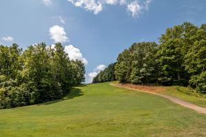 Winston Salem Golf Course Investment Property in Stokes, NC (37 of 92)