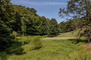 Winston Salem Golf Course Investment Property in Stokes, NC (70 of 92)