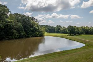 Winston Salem Golf Course Investment Property in Stokes, NC (66 of 92)
