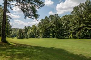Winston Salem Golf Course Investment Property in Stokes, NC (42 of 92)