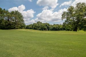 Winston Salem Golf Course Investment Property in Stokes, NC (43 of 92)